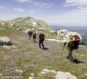 Ascent Programme 2017 Mountaineering Club of Kalamata